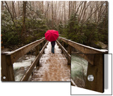 Girl Walking across a Wooden Bridge During a Spring Snowfall Prints by Karen Kasmauski