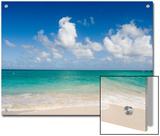 Beautiful Tropical Beach on Oahu Island in the Hawaiian Islands Print by Charles Kogod
