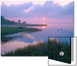 Marsh at Sunrise over Eagle Bay, St Joseph Peninsula, Florida Prints by Tim Fitzharris/Minden Pictures