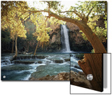 Scenic Waterfall Framed by Trees Prints by W.E. Garrett