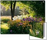 Summer Flower Adourn a Farm Garden Prints by Kenneth Ginn
