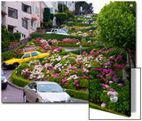 Famous Crooked Street known as Lombard Street in San Francisco Prints by Stacy Gold