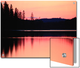 Dramatic Picture of a Forest-Edged Lake under a Pinkish-Orange Sky Art by Mattias Klum