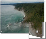 The Fog Covered Redwood Coast at Del Norte Coast Redwoods State Park Prints by Michael Nichols