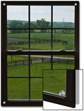 View of a Horse Farm from Inside a Window Posters by Stacy Gold