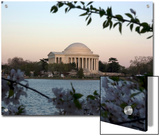 The Jefferson Memorial, Washington, D.C. Prints by Stacy Gold
