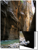 The Virgin River Flows Through Narrows Canyon in Zion National Park, Utah Prints by Stacy Gold