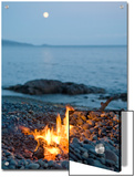 Campfire on a Beach with a Full Moon Visible Reprodukcje autor Taylor S. Kennedy