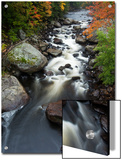 The Fast Moving West Branch of the Ausable River Posters by Michael Melford