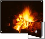 Campfire in Yellowstone Reprodukcje autor Michael S. Quinton