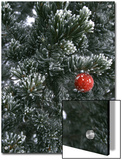 Holiday Ornament Hanging on Snow Dusted Pinion Tree, Colorado Posters by Kate Thompson