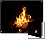 Campfire in Halsey, Ne Reprodukcje autor Joel Sartore