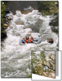Rafting on the Upper Kern River, Sequoia National Forest, California Posters by Rich Reid