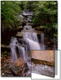 A Beautiful Gentle Waterfall in a Forested Scenic Prints by Amy & Al White & Petteway