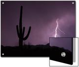 Single Lightning Bolt Strikes in the Desert During Monsoon Season, Arizona Art by Mike Theiss