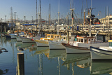 Fishermen's Terminal; San Francisco California United States of America Reproduction photographique par  Design Pics Inc