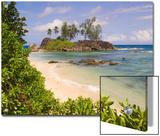 A Beach on Mahe Island Prints by Alison Wright