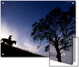 Silhouette of Cowboy, Picabo, Idaho Print by Kate Thompson