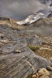 Mount Athabasca; Jasper National Park, Alberta, Canada Photographic Print by  Design Pics Inc