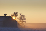 Sunlight Shining Behind a House in a Rural Area; Parkland County Alberta Canada Photographic Print by  Design Pics Inc