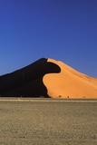 Sand Dune and Field Fotografisk tryk af  Design Pics Inc