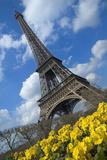 Paris, France Photographic Print by  Design Pics Inc