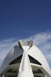 Palau De Les Arts Reina Sofia Building by Santiago Calatrava Photographic Print by  Design Pics Inc