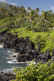 Hawaii, Maui, Hana, the Black Sand Beach of Waianapanapa Photographic Print by  Design Pics Inc