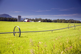 Rolling Irrigation Sprinkler on Hay Field with Farm Background Mat-Su Valley Sc Alaska Summer Photographic Print by  Design Pics Inc