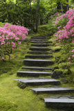 Rock Stairway Along a Moss Covered Hill with Flowering Bushes, Portland Photographic Print by  Design Pics Inc