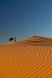 Merzouga, Morocco Reproduction photographique par  Design Pics Inc