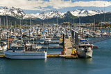Scenic View of the Homer Small Boat Harbor with the Kenai Mountains in the Background Photographic Print by  Design Pics Inc