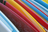 Close Up of Coloured Surfboards Lined Up; Honolulu, Oahu, Hawaii, United States of America Fotografisk tryk af  Design Pics Inc