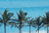 Beach in Cancun Papier Photo par  Design Pics Inc