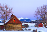 Wood Barn with Lighted Holiday Wreath and Christmas Tree on Farm at Dusk Arkansas Valley Colorado W Fotografisk tryk af  Design Pics Inc