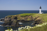 White Lighthouse on the Ocean with Blue Sky and Wildflowers, Newport, Oregon Photographic Print by  Design Pics Inc
