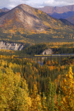 Alaska Railroad Train Crossing a Tressel at Denali National Park, Interior, Alaska, Fall Photographic Print by  Design Pics Inc
