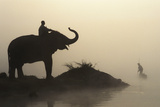 Design Pics Inc - An Elephant with its Mahout Stand at Edge of the Rapti River Near Sauraha and Chitwan National Park Fotografická reprodukce