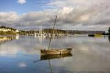 Harbour in Tarbert; Scotland, Uk Fotografisk tryk af Design Pics Inc
