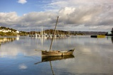 Harbour in Tarbert; Scotland, Uk Photographic Print by  Design Pics Inc