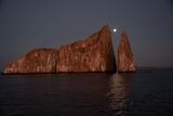 Moonrise Above Sleeping Lion in the Galapagos Photographic Print by Karen Kasmauski