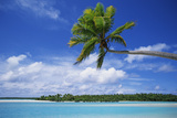 View of Deserted Beach from Tapuae Tai Island Photographic Print by  Design Pics Inc