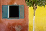 A Tree Outside a Colorful Building and a Window with Blue Shutters; Dakar Senegal Fotografisk tryk af Design Pics Inc