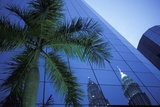 Palm Tree and Reflection of Petronas Towers in Facade Photographic Print by  Design Pics Inc
