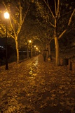 A Man Walks a Dog in the Rain Along a Promenade by the Guadiana River, in Autumn Photographic Print by Macduff Everton