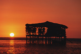 Pelican Bar at Sunset Photographic Print by  Design Pics Inc