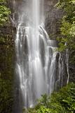 Hawaii, Maui, Kipahulu, Wailua Falls Photographic Print by  Design Pics Inc