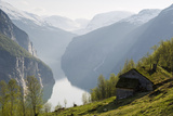 Mountain Hut at Blomberg in the Geirangerfjorden in Norway Photographic Print by Erlend Haarberg
