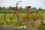 Indonesia, Bali, Ubud, Vintage Bike in Front of Rice Fields Photographic Print by  Design Pics Inc
