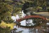 A Footbridge over Water in a Garden Photographic Print by Macduff Everton
